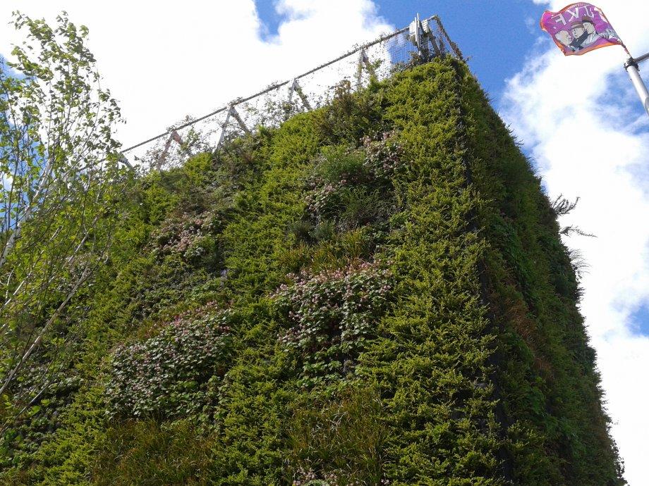 Irrigatiesysteem verticale tuin te belfast hb for Verticale tuin systeem