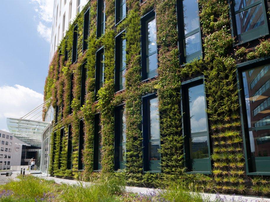 Irrigatiesysteem verticale tuin kantoor eneco hb for De tuinen rotterdam
