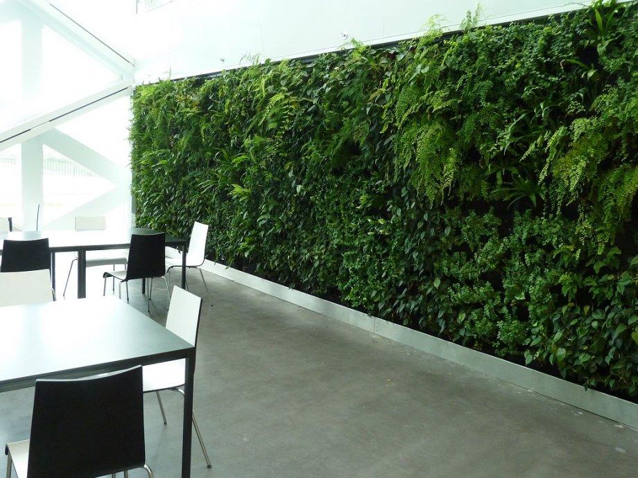 Verticale Tuin Systeem : Verticale tuin met pijp pvc foto genomen in jogja yogyakarta
